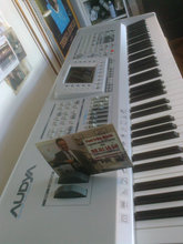 Festmusik for alle m/keyboard/piano/sang