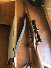 Browning x-bolt hunter 308