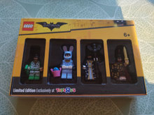 5004939 Minifigure Collection