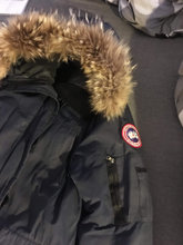 HASTER Canada goose str S